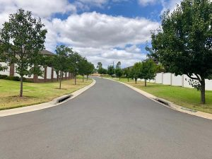 Pear - Street lining